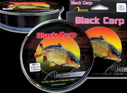 Focus-Black-Carp